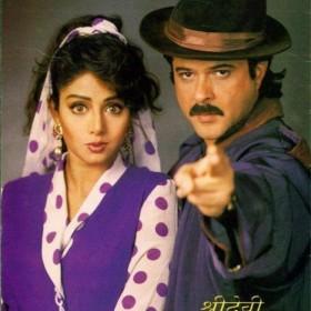 श्रीदेवी के सुपरहिट फिल्मों से घबरा गए थे अनिल कपूर
