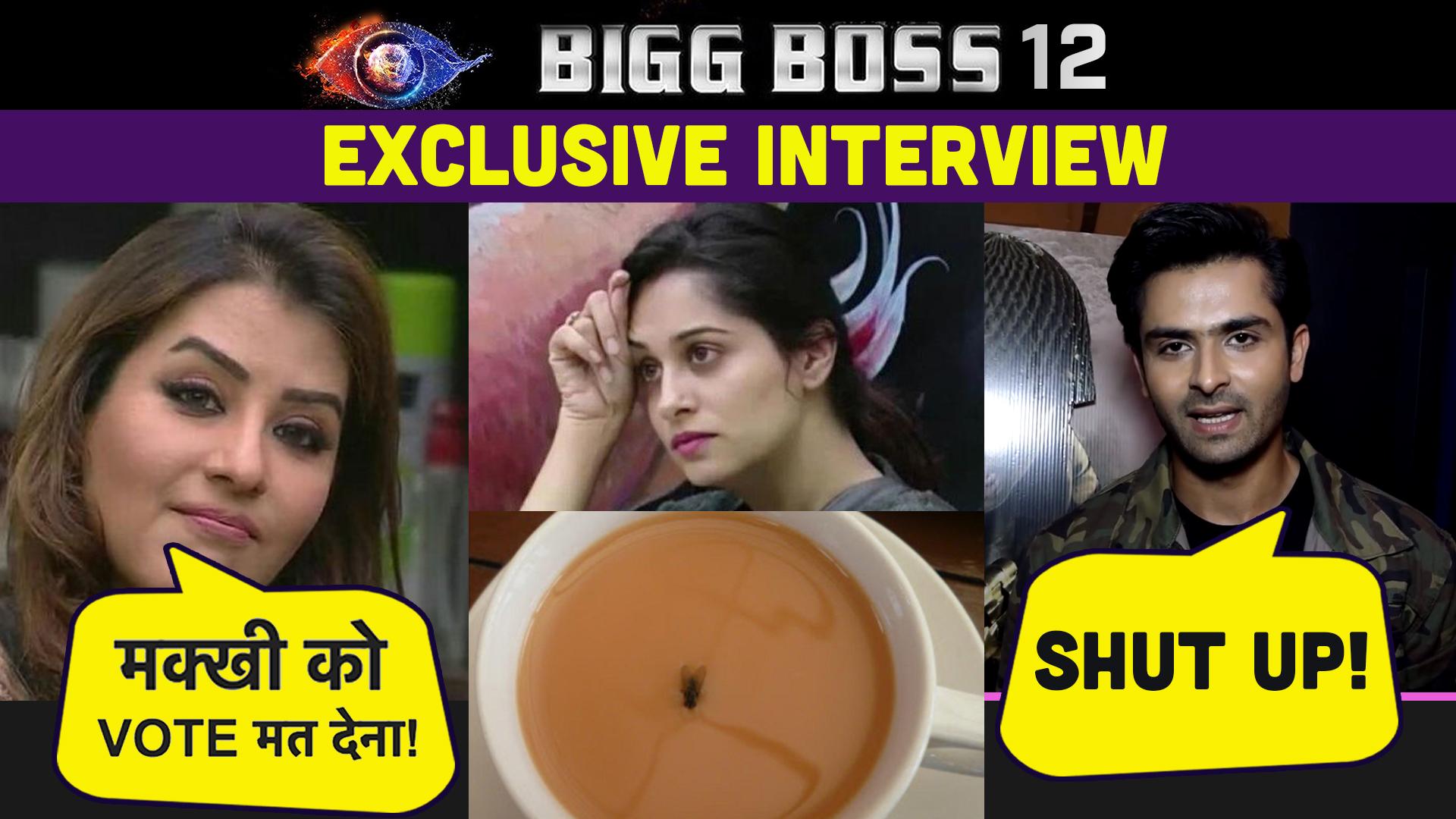 EXCLUSIVE VIDEO: शिल्पा शिंदे ने दीपिका ककर को कहा था मक्खी, शोएब इब्राहिम ने दिया ये REACTION