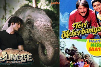 Junglee, Teri Meherbaniyan And Haathi Mere Saathi