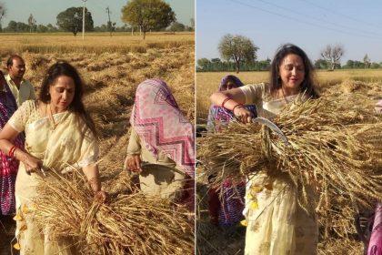Hema Malini Mathura Latest Hindi News Hema Malini Mathura Samachar Hema Malini Mathura Biopic Hindi News