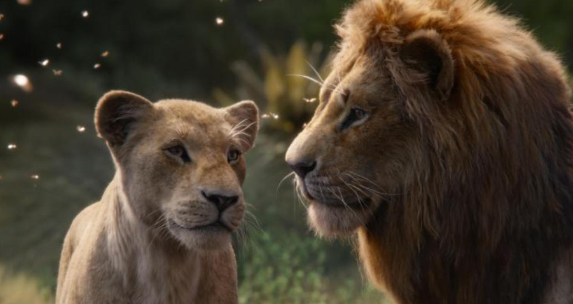 The Lion King Movie Review: शानदार विजुअल इफेक्ट, दमदार वॉयस ओवर, लेकिन इमोशनल टच देने में नाकामयाब रही फिल्म