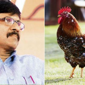 Shiv Sena MP Sanjay Raut wants chicken and eggs to be vegetarian twitter users mocks him