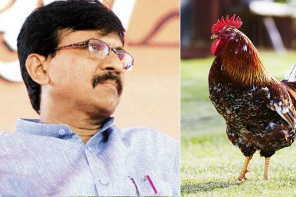 Shiv Sena MP Sanjay Raut wants chicken and eggs to be vegetarian twitter users mocks him