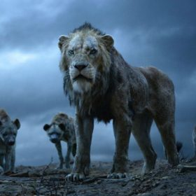 The Lion King Movie Box Office Collection India Avengers films The Jungle Book