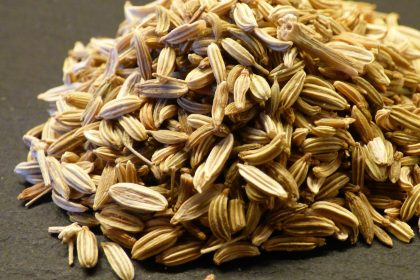 Fennel Seeds Saunf Benefits