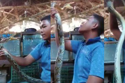 Snake Fange A Man Viral Video