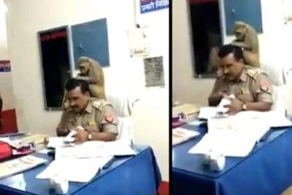 बंदर ने दी पुलिसकर्मी को मसाज (फोटो-वायरल)