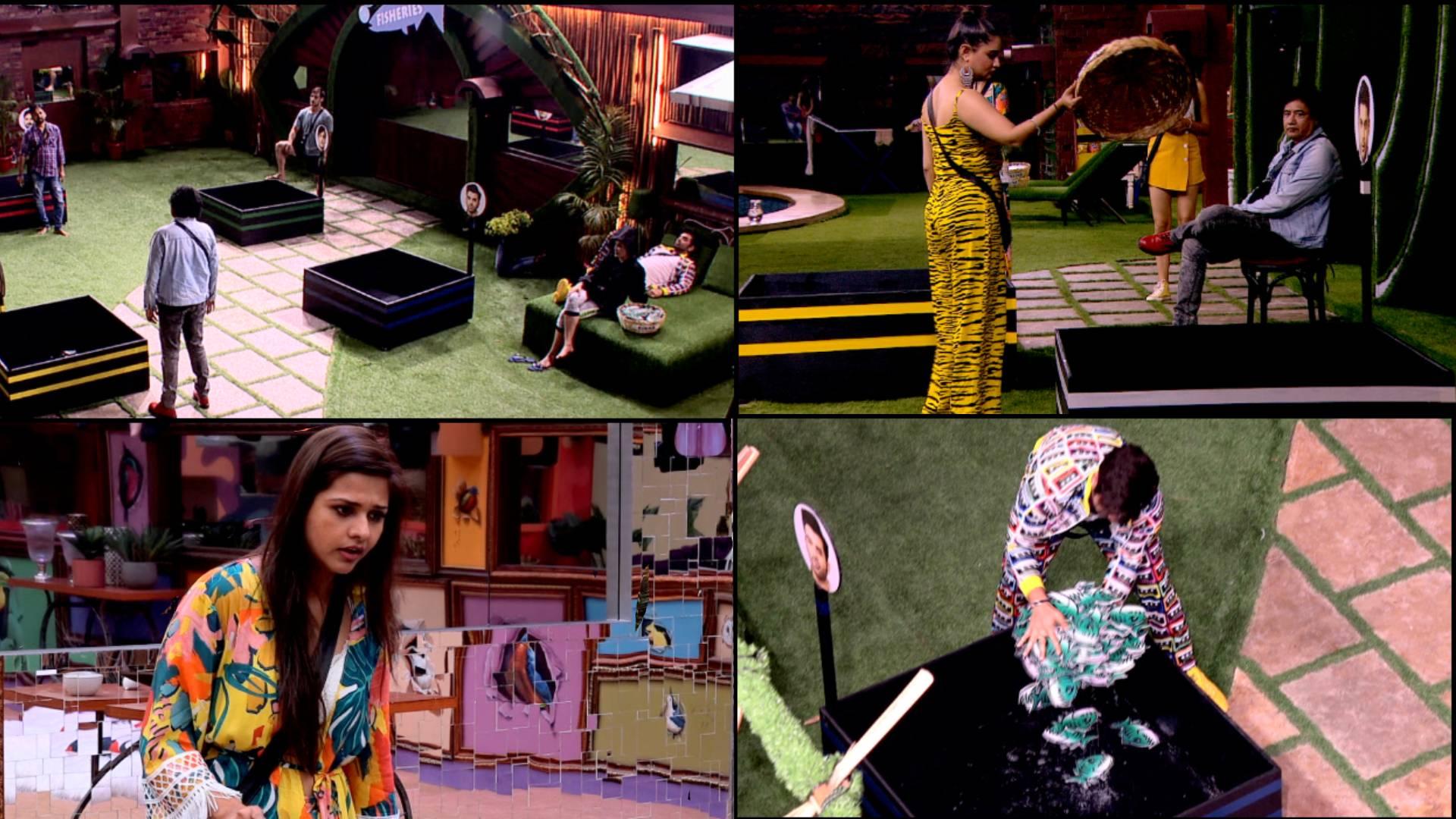Bigg Boss 13 Bulletin Day 13: माहिरा शर्मा ने सिद्धार्थ शुक्ला को कहा बदतमीज, शहनाज-कोएना मित्रा में हुई बहस