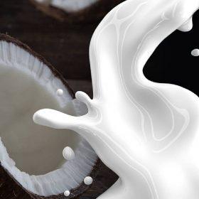 नारियल के दूध के फायदे (फोटो-पिक्साबे)