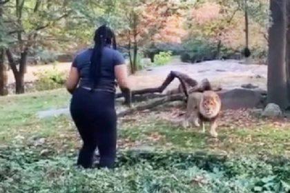 शेर के सामने नाचने वाली महिला (फोटो-वायरल)