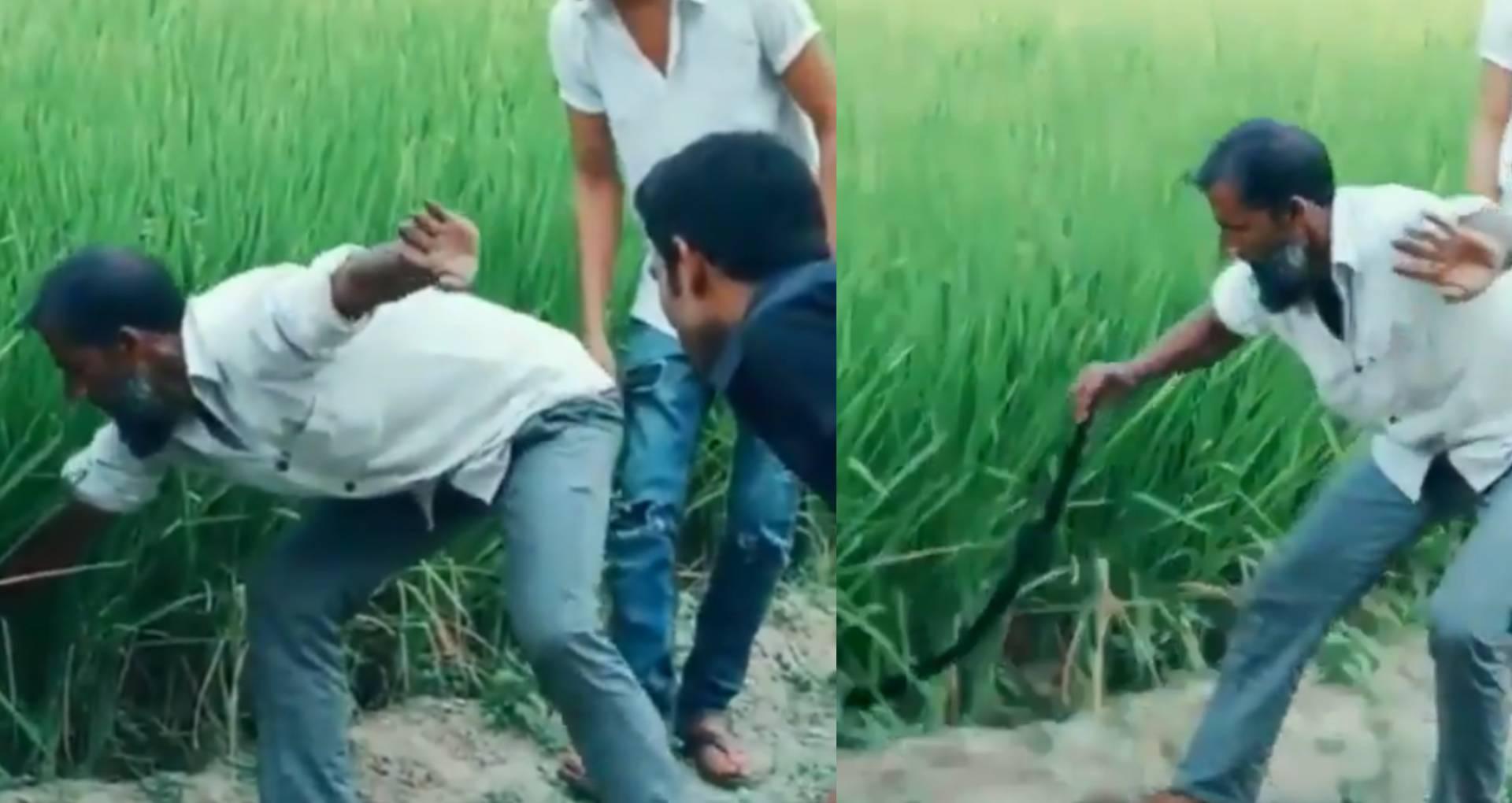 Viral Video: इस अंदाज में सांप पकड़ रहा है ये शख्स, आखिरी में किया ये काम, तो निकल पड़ी लोगों की हंसी