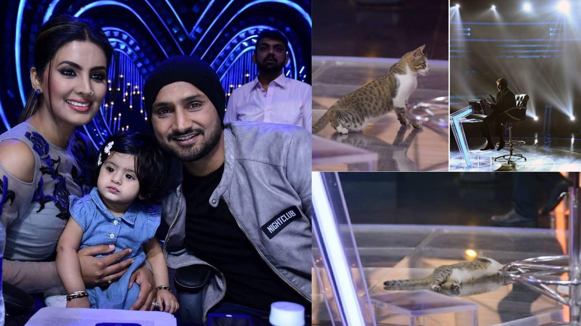 Trending News: केबीसी के मंच पर बिल्ली बनने पहुंची करोड़पति, हरभजन सिंह ने अपनी शादी को लेकर किया बड़ा खुलासा