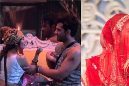 TV TOP 5 NEWS: माहिरा शर्मा ने जड़ा पारस छाबड़ा को थप्पड़, मोहना ने ट्रोलर कोदिया करारा जवाब