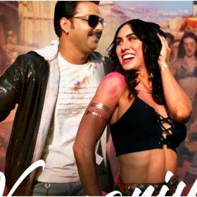 Pawan Singh Holi Song: Pawan Singh holi song 'kamariya hila rahi hai' release went viral on internet