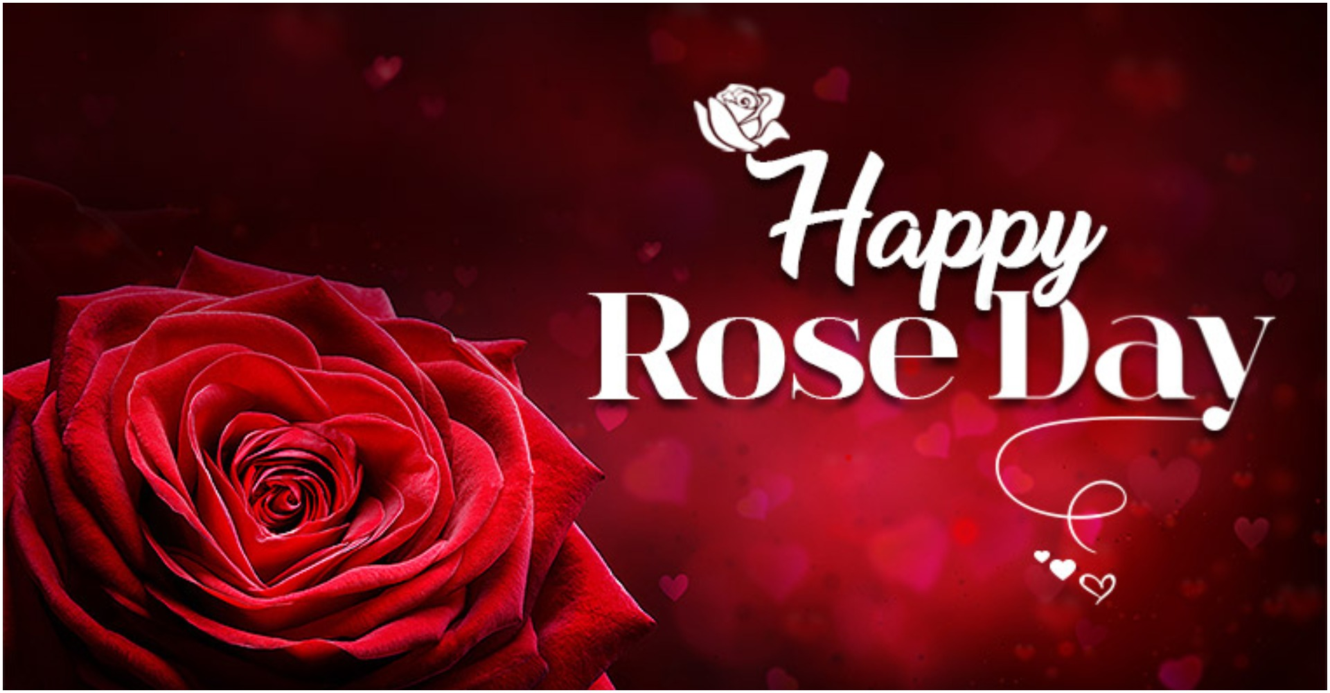 Image result for happy rose day 2020