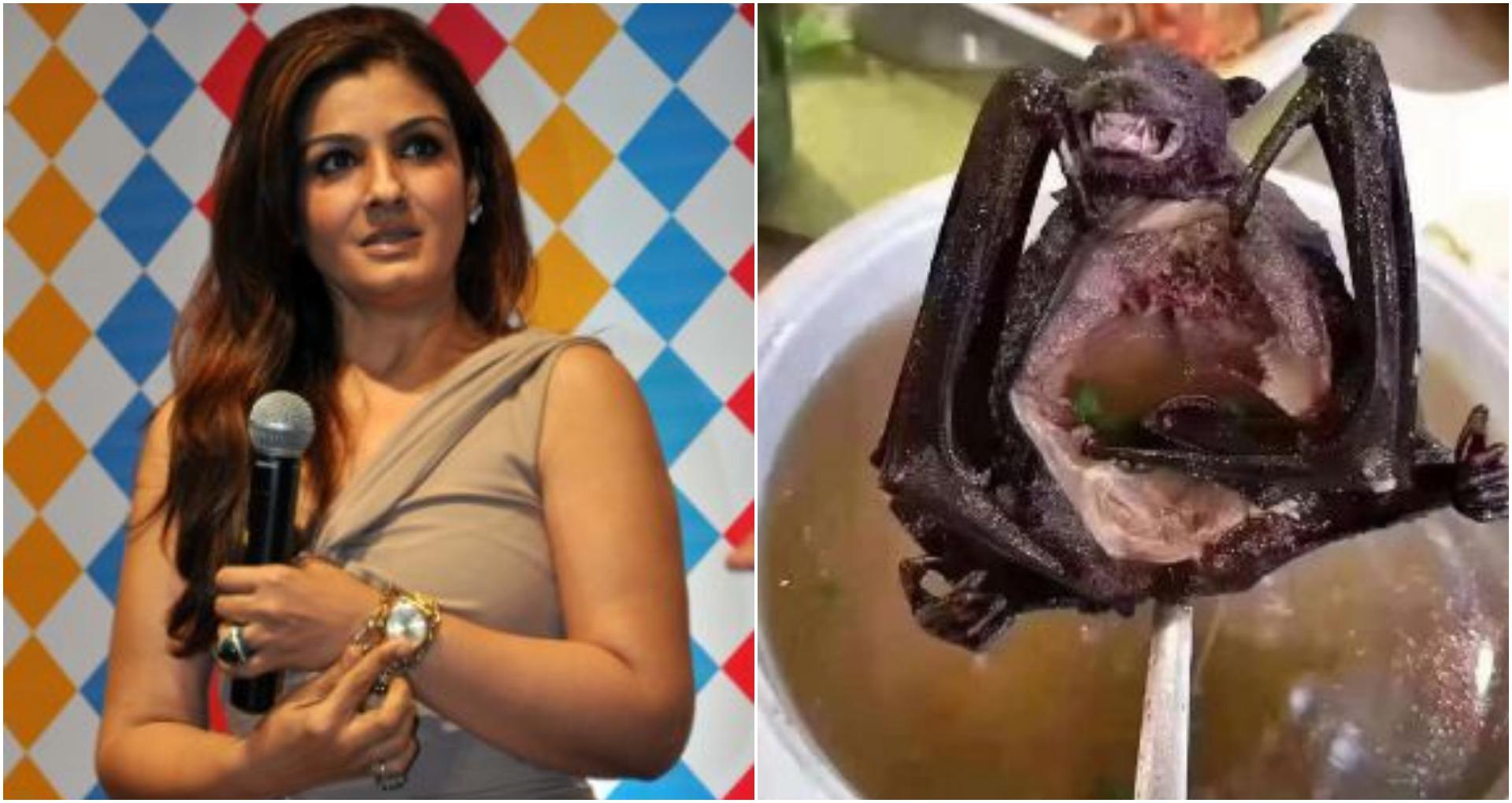 चीन में फिर शुरू हुई चमगादड़ के मांस की बिक्री, रवीना टंडन ने कहा- इंसान ने सबक नहीं सीखा…