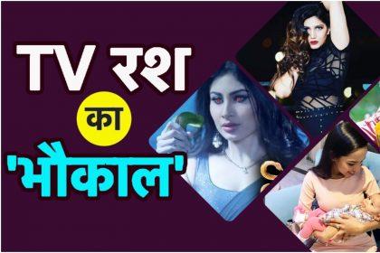 Tv Top 5 News: TRP की लिस्ट में आगे आया शो Khatron Ke Khiladi, Sidharth Shukla ढूंढ रहे हैं शादी के लिए लड़की