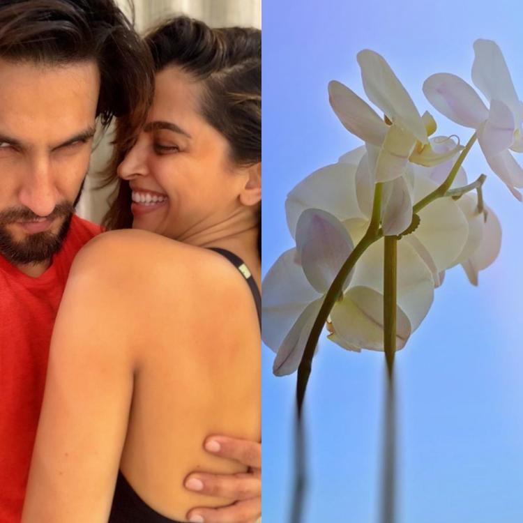 Lockdown: दीपिका पादुकोण पति रणवीर सिंह के साथ लॉकडाउन में इस तरह बिता रही है समय, पेड़ पौधों के लिए प्यार..