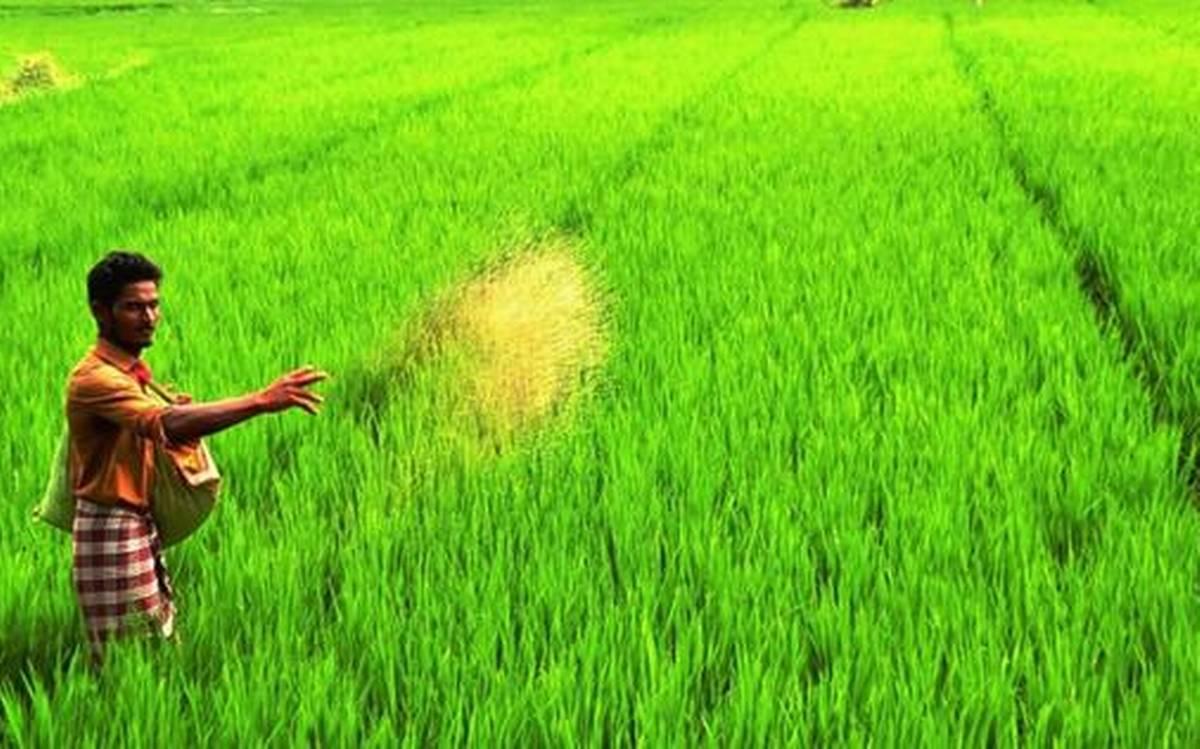 आत्मनिर्भर आर्थिक पैकेज: कृषि क्षेत्र को 1 लाख करोड़ रुपये के फंड का एलान, किसानों के लिए 7 महत्वपूर्ण घोषणाए