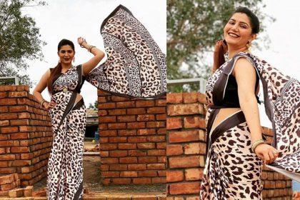 Sapna Choudhary Photos: साड़ी पहन सपना चौधरी ने लूटा फैंस का दिल! जमकर वायरल हो रहीं ये फोटो